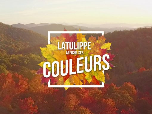 Latulippe.com